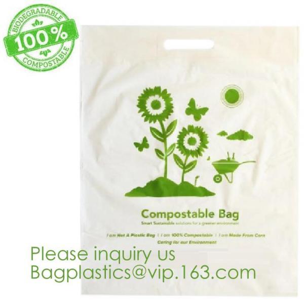 Quality 100% COMPOSTABLE BAG, 100% BIODEGRADABLE SACKS, D2W BAGS, EPI BAGS, DEGRADBALE BAGS, BIO BAGS, GREEN for sale