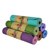 Wholesale biodegrable Yoga Mat Private Label Good Quality Eco Friendly TPE Yoga
