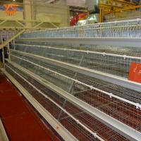 Buy cheap Poultry Equipment A Type Layer Chicken Cage with Automatic System WhatsApp:+8615638238763 from wholesalers