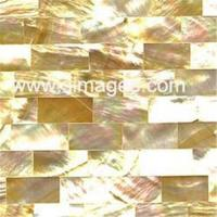 Buy cheap Shell Tile (MT-Y09) from wholesalers