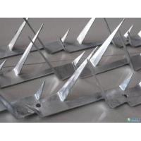 Buy cheap Spike Wire,New type fence top for protecting, Wall spike wires,1m-1.5m length product