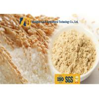 Buy cheap Non Allergen Lactose Free Rice Protein Nutrition For Healthy Food Addictive product