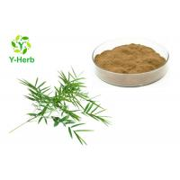Buy cheap Healthcare Herbal Extract Powder Bamboo Extract Powder Flavone 10% 20% 30% from wholesalers