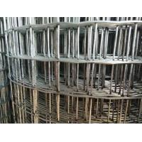 Buy cheap 1/2'' Plastic Coated Wire Mesh Fencing Rolls , Chicken Galvanised Mesh Fencing from wholesalers