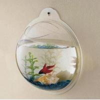 Buy cheap Custom Acrylic Products , Tranparent Acrylic Fish Tank With Long Life Span from wholesalers