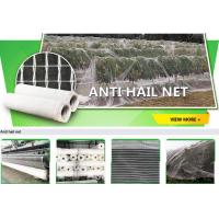 Buy cheap bird protection net, net trap,bird net,anti-bird net,mist net,pe tarpaulin,tarpaulin roll,shade net,mesh net,monoflament from wholesalers