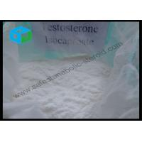 Buy cheap Safest Testosterone Anabolic Steroid , Testosterone Isocaproate Powder Supplements from wholesalers