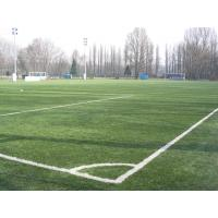 Buy cheap Football Field Artificial Turf / artificial grass , eco friendly for exhibition hall from wholesalers