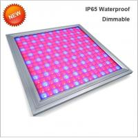Buy cheap 110V Led Full Spectrum Grow Lights , Led Flowering Grow Lights Energy Saving product