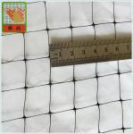 Plastic Fence Netting/ B.O.P Netting/ Mesh Size 2cm*2cm/ PP/ Black