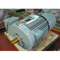 Buy cheap high performance Inverter Duty Three Phase Electric Motor from wholesalers