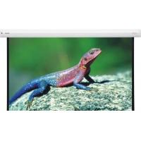 Buy cheap Motorized Projection Screen from wholesalers