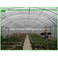 Buy cheap agricultural greenhouse hot sale from wholesalers