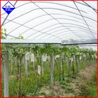 Quality PP Spunbond Nonwoven Agriculture Crop Cover Cloth , Non Woven Weed Control Fabric for sale