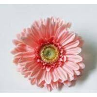 Buy cheap Pink Gerbera Head from wholesalers