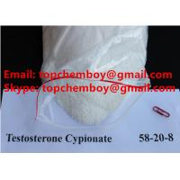 Buy cheap CAS 58 20 8 Testosterone Anabolic Steroid Test Cyp Powder For Bodybuilder from wholesalers