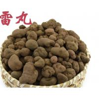 Buy cheap Stone-like Omphalia lapidescens Schroet tcm traditional chinese medicine Lei wan from wholesalers
