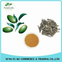Buy cheap China Made Only Plant Extract Natural High Quality Olive Leaf Extract Powder from wholesalers