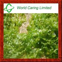 Buy cheap Cosmetic Ingredient Seaweed extract Fucoidan polysaccharide 30%-99% from wholesalers