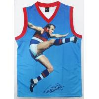 Buy cheap Children's AFL Team Jumpers, AFL Footy JerseysDigital Print 100% Polyester Fabric from wholesalers