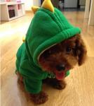 Buy cheap wholesale china Pet Puppy Summer Shirt Pet Clothes dinosaur Vest T Shirt from wholesalers