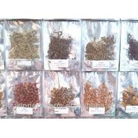 Buy cheap Chinese Medicine  Materical Crude Slices Tranditional Chinese Herb from wholesalers