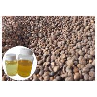 Skin Moisturizing Natural Plant Extract Oil Camellia Tea Oil Cold Pressed Yellow Color