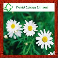 Quality Feverfew Extract Parthenolide 0.3%, 0.8% herbal extract  HPLC for sale