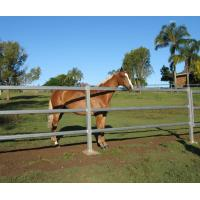 Buy cheap Horse Arenas  inc gate Livestock Cattle Sheep Oval Rail holding yard from wholesalers
