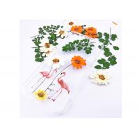 Buy cheap Fashion Dried Flower Art 3D Decorative Painting For Dinning Room Display from wholesalers