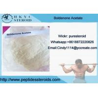 Buy cheap Muscle Growth White Raw Steroid Powders Boldenone Acetate With 99% Purity from wholesalers