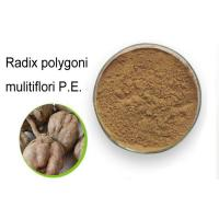 Buy cheap 99% Natural Weight Loss Powder Radix Polygoni Multiflori / He Shou Wu Powder product