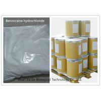 China Benzocaine Hydrochloride Local Anesthetic Agent Pain Reliever Benzocaine HCl CAS 23239-88-5 on sale