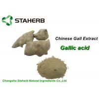 Cosmetic Pure Natural Plant Extracts , Gallnut Extract PowderGallic Acid CAS 149 91 7