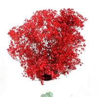 Buy cheap Immortal Preserved Babys Breath Wedding Bouquets Last For 2-3 Years from wholesalers