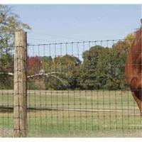 Buy cheap Sell The Guage is 14 High Tensile Field Fence from wholesalers