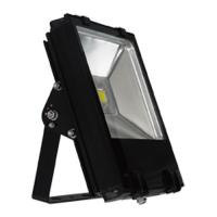 Buy cheap 30W Epistar Warm White LED Flood Billboard Lighting 50 - 60hz for parking lots, gym from wholesalers