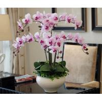 China atificial home decor pu material best quality lifelike phalaenopsis orchid on sale