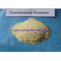 Trenbolone Base Trenbolone Powder / Bodybuilding Injectable Tren Muscle Supplement