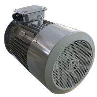 Buy cheap Brushless AC Three Phase Induction Motor 15KW 20HP 380V 400V 3000RPM Y2-160L-4 from wholesalers