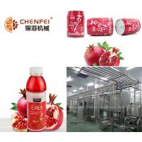 Buy cheap Guava Fruit Juice Processing Equipment SS304 Material CFM-B-03-26T Silver Color from wholesalers