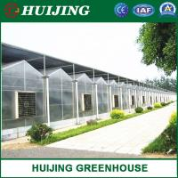 Buy cheap Arch Type Steel Structure Poly Film/PC Sheet Covered Greenhouse for Vegetables/Flowers/Fruits/Experiment/Eco Restaurant from wholesalers