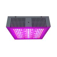 Buy cheap Osunby 600W Dimmable LED Grow Lights Full Spectrum for Indoor Greenhouse Plants product