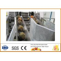 Buy cheap Turnkey Pineapple juice Processing Line 10T/H Capacity CFM-B-02-10T from wholesalers