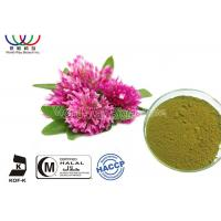 Buy cheap Green Fine Powder Natural Botanical Extracts , Red Clover Leaf Extract Balance Female Estrogen product