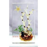 Buy cheap China real sealife amber novel Paperweight,novel resin crafts from wholesalers