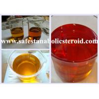 Buy cheap Injectable Trenbolone Enanthate Anabolic Steroids For Building Muscle CAS 10161-33-8 from wholesalers