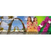 Buy cheap Hawaii Party Leis / Flower Leis / Flower Necklace from wholesalers