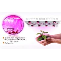 Buy cheap Hot sale Noah 4S 6S 8S full spectrum 600W 1000W 1200W  led grow light for greenhouse&vegetables&herbs from wholesalers