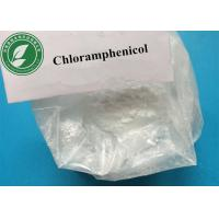 Buy cheap Pharmaceutical Powder Chloramphenicol For Antibacterial CAS 56-75-7 from wholesalers